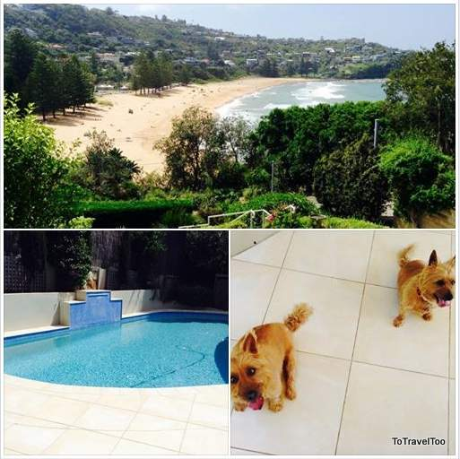 House sitting in Whale Beach Sydney Australia
