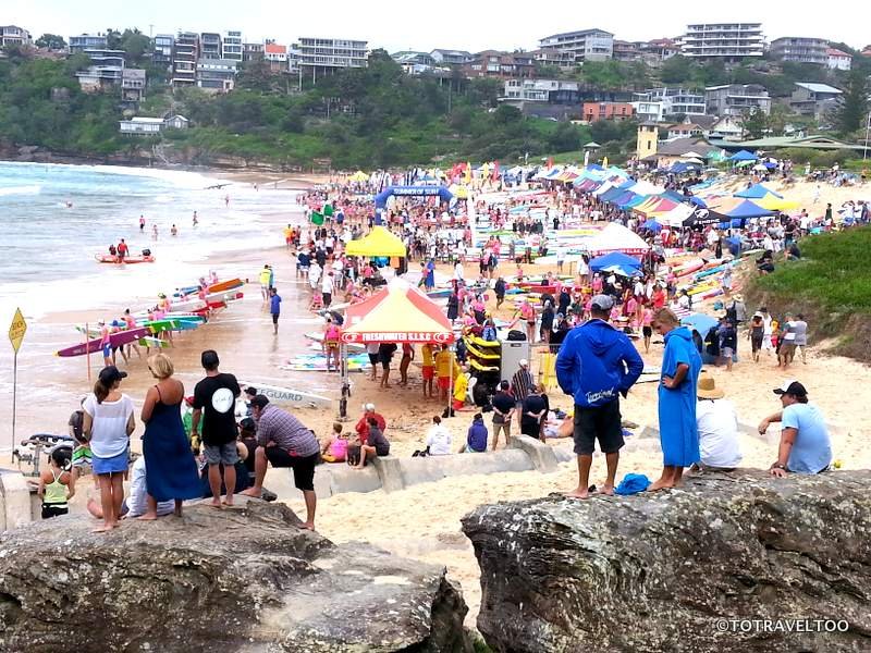 Freshwater Surf Carnival near Manly