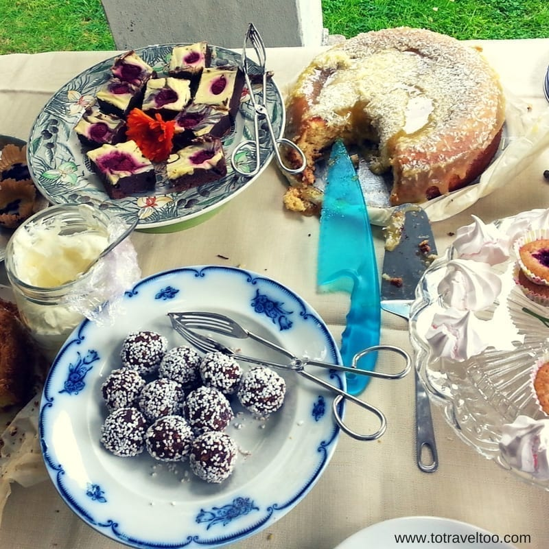 Pic-nic-fika Julita Manor Sormland Region Sweden