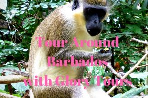 Tour Around Barbados with Glory Tours
