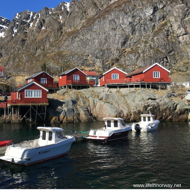 Why You Should Visit Northern Norway